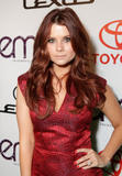 Джоэнна Гарсиа, фото 339. JoAnna Garcia 20th Annual Environmental Media Awards at Warner Bros. Studios on October 16, 2010 in Burbank, California, foto 339